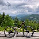 """Beskid Bikes Pine 29"""""""