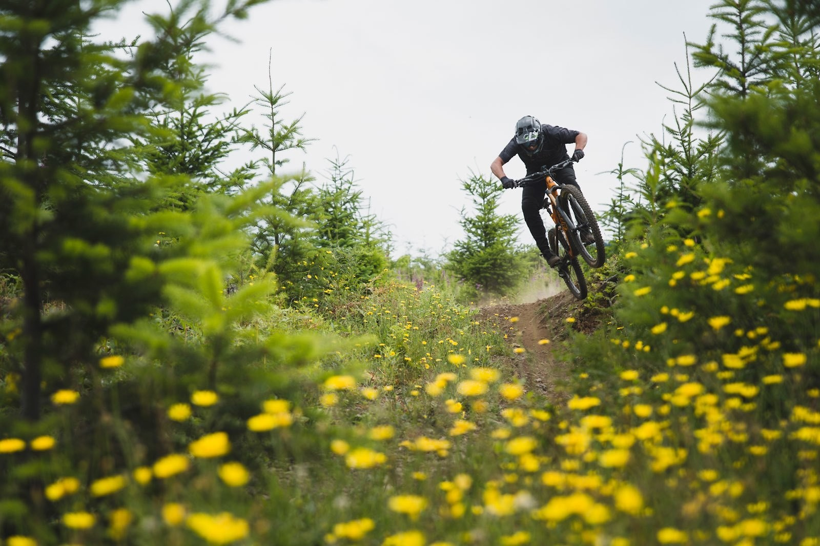 flow ers - Hollywood Gainey - Mountain Biking Pictures - Vital MTB