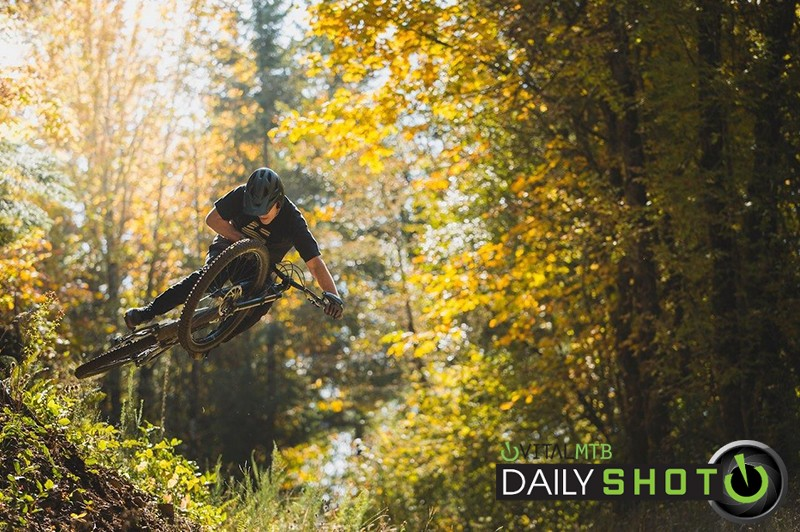 Schleybletop - Hollywood Gainey - Mountain Biking Pictures - Vital MTB