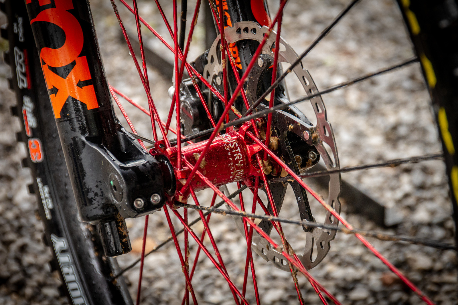Steve Estabrook, Industry Nine Goodness on his Intense M29 - PIT BITS - 2019 Windrock Tennessee National Pro GRT  - Mountain Biking Pictures - Vital MTB