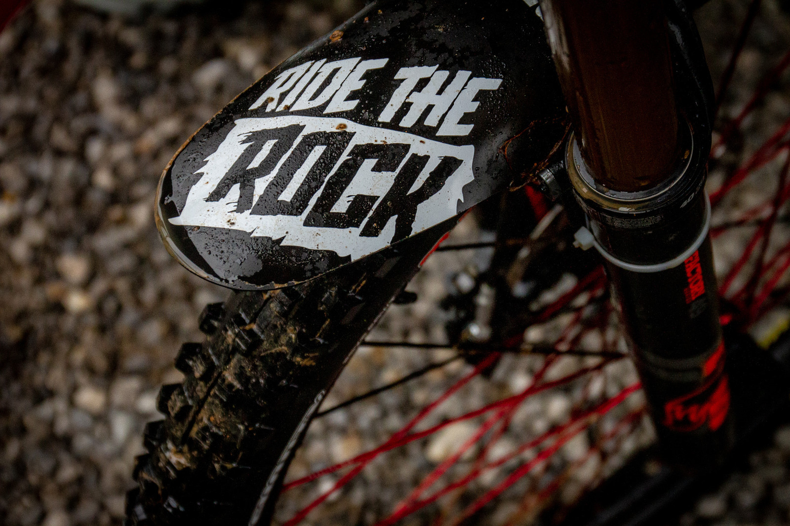 Steve Estabrook Showing Love for Windrock - PIT BITS - 2019 Windrock Tennessee National Pro GRT  - Mountain Biking Pictures - Vital MTB