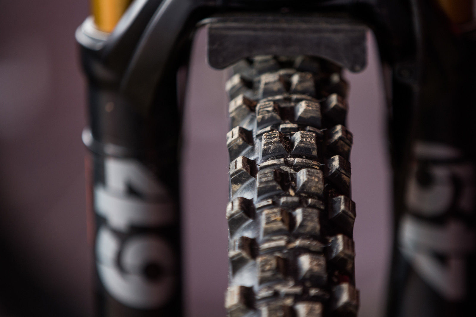 Neko's Kenda Mud Tires - PIT BITS - 2019 Windrock Tennessee National Pro GRT  - Mountain Biking Pictures - Vital MTB