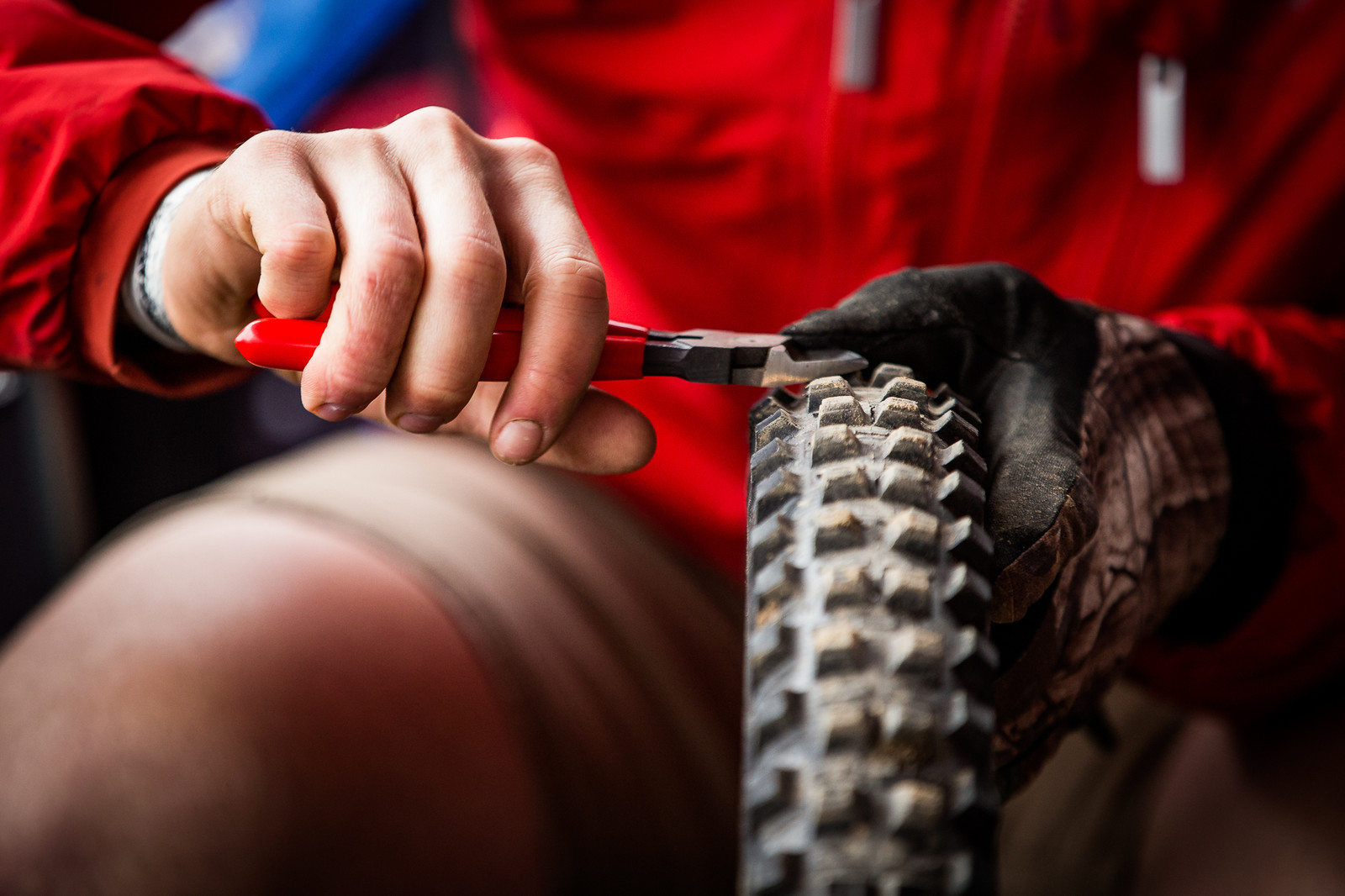 Cuttin' Spikes - PIT BITS - 2019 Windrock Tennessee National Pro GRT  - Mountain Biking Pictures - Vital MTB