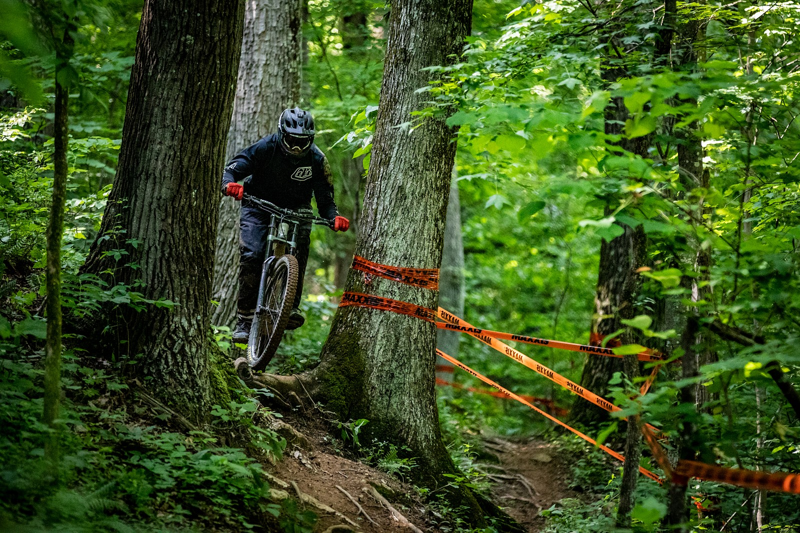 Tight squeeze - JackRice - Mountain Biking Pictures - Vital MTB