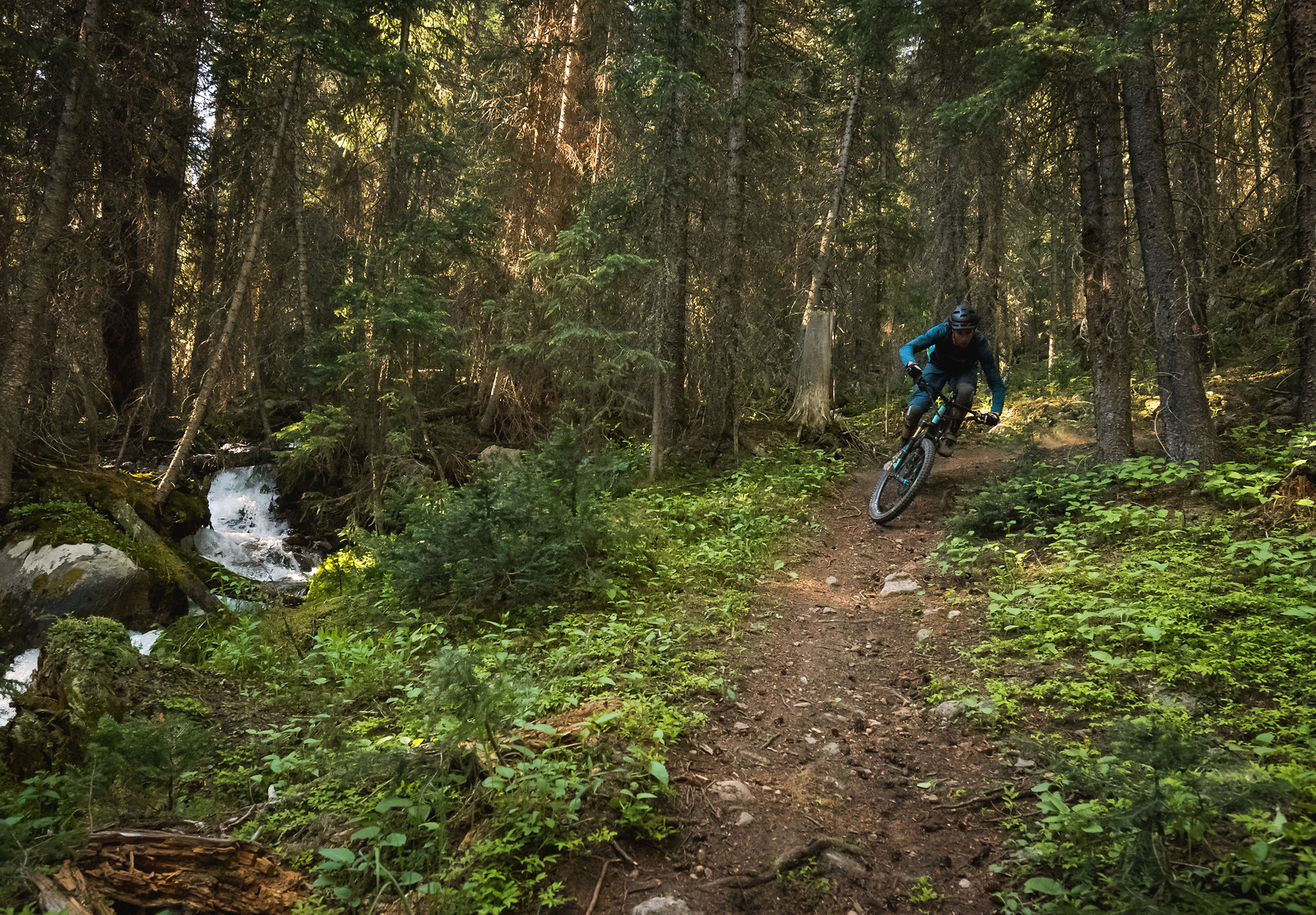 PJR 1839-2 - russellpj - Mountain Biking Pictures - Vital MTB