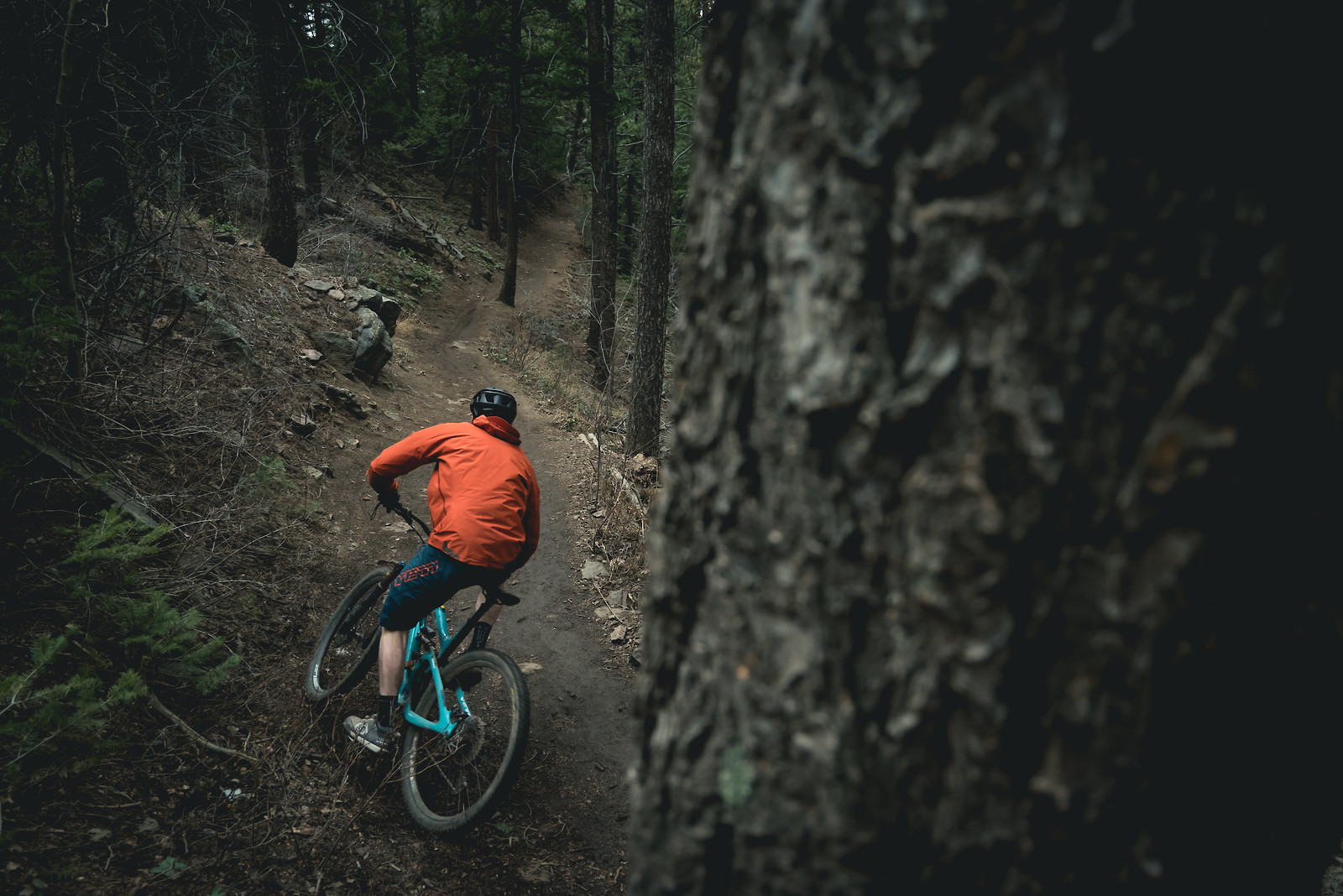 Solo Springtime Singletrack - russellpj - Mountain Biking Pictures - Vital MTB