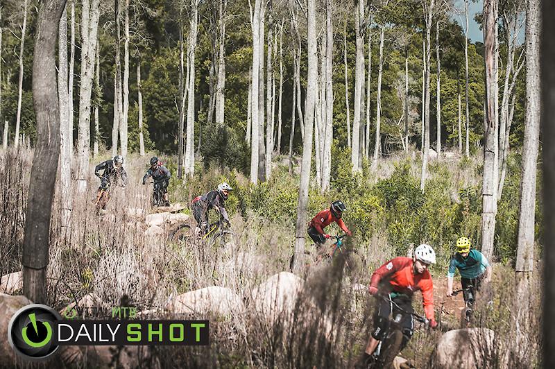 Trail Train - Henrique_Monteiro - Mountain Biking Pictures - Vital MTB