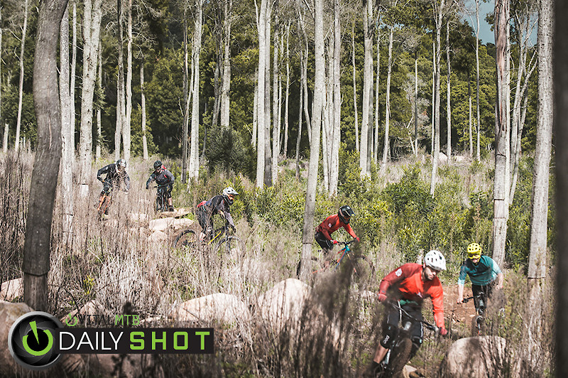 Trail Train - Henrique_Monteiro - Mountain Biking Pictures - Vital MTB