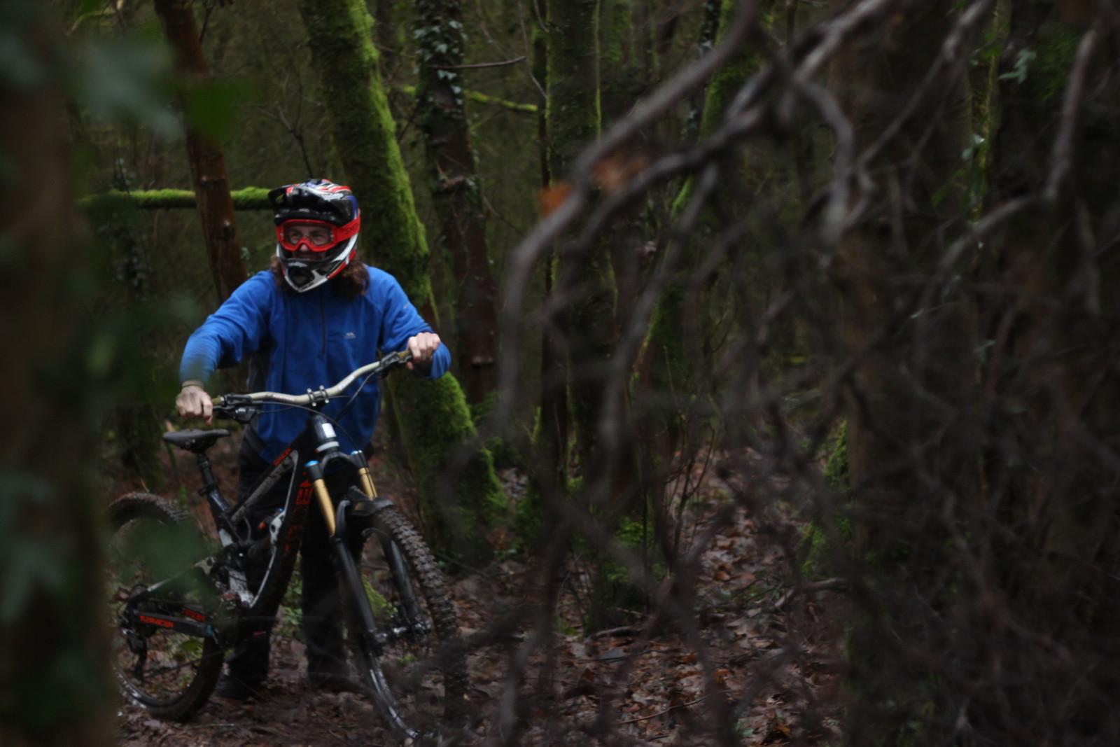Matthew Davies - Matthew Davies - Mountain Biking Pictures - Vital MTB