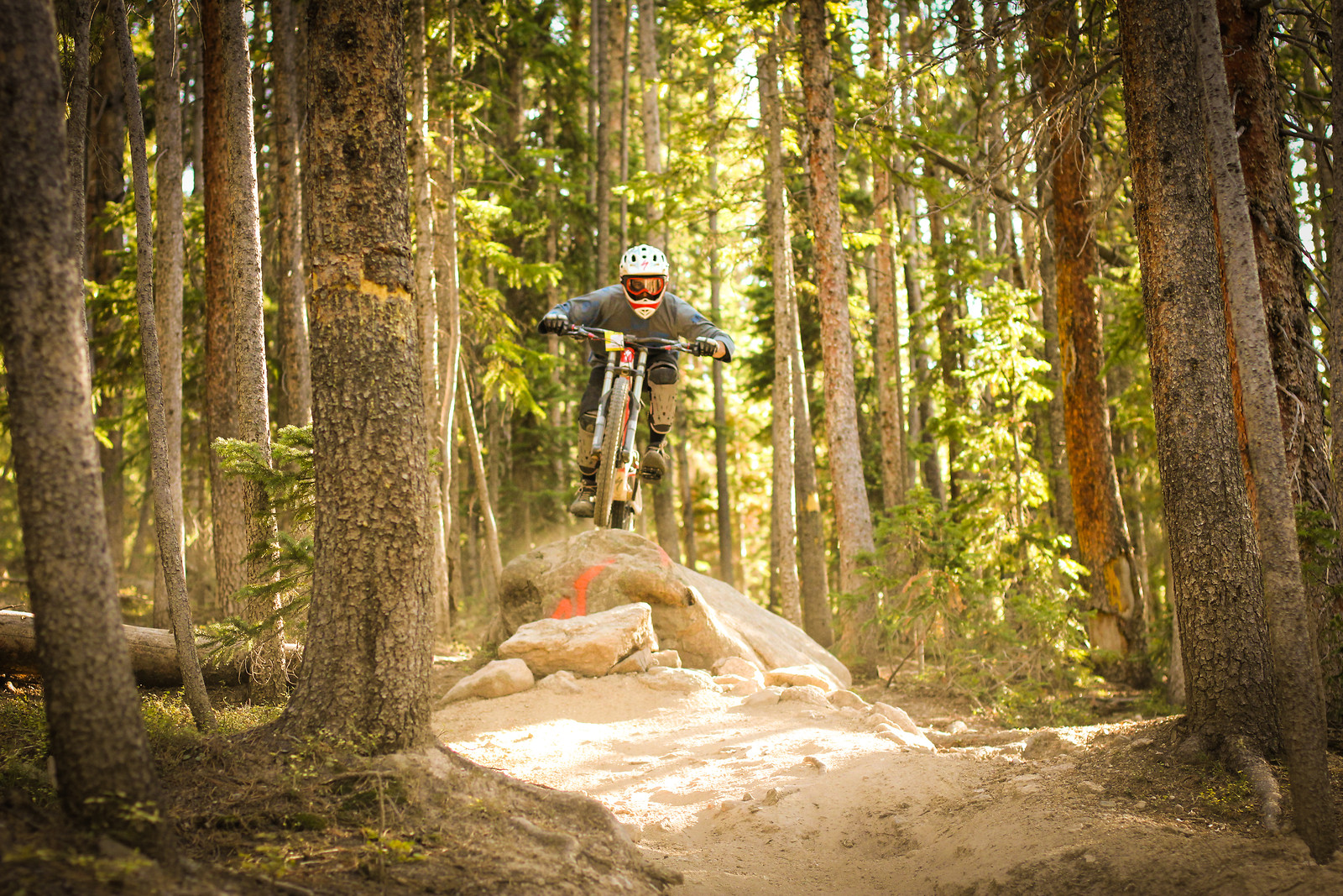Roscoe - dacrebrochill17 - Mountain Biking Pictures - Vital MTB