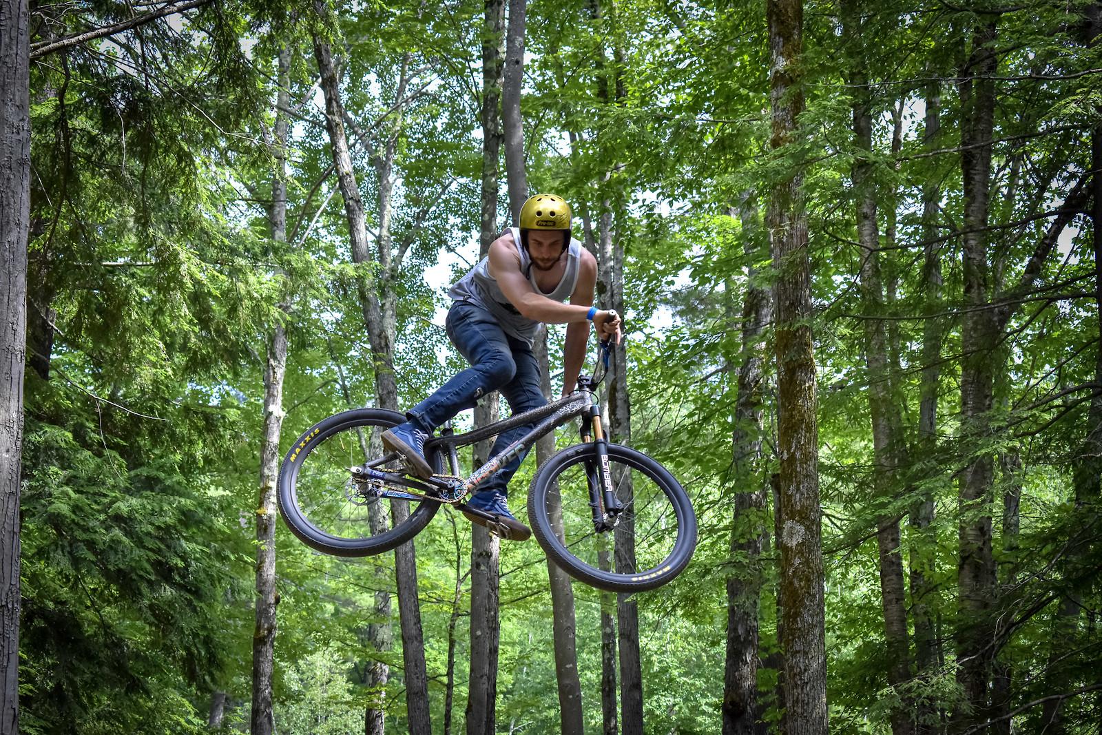 Sherwood Forest - SmashNick - Mountain Biking Pictures - Vital MTB