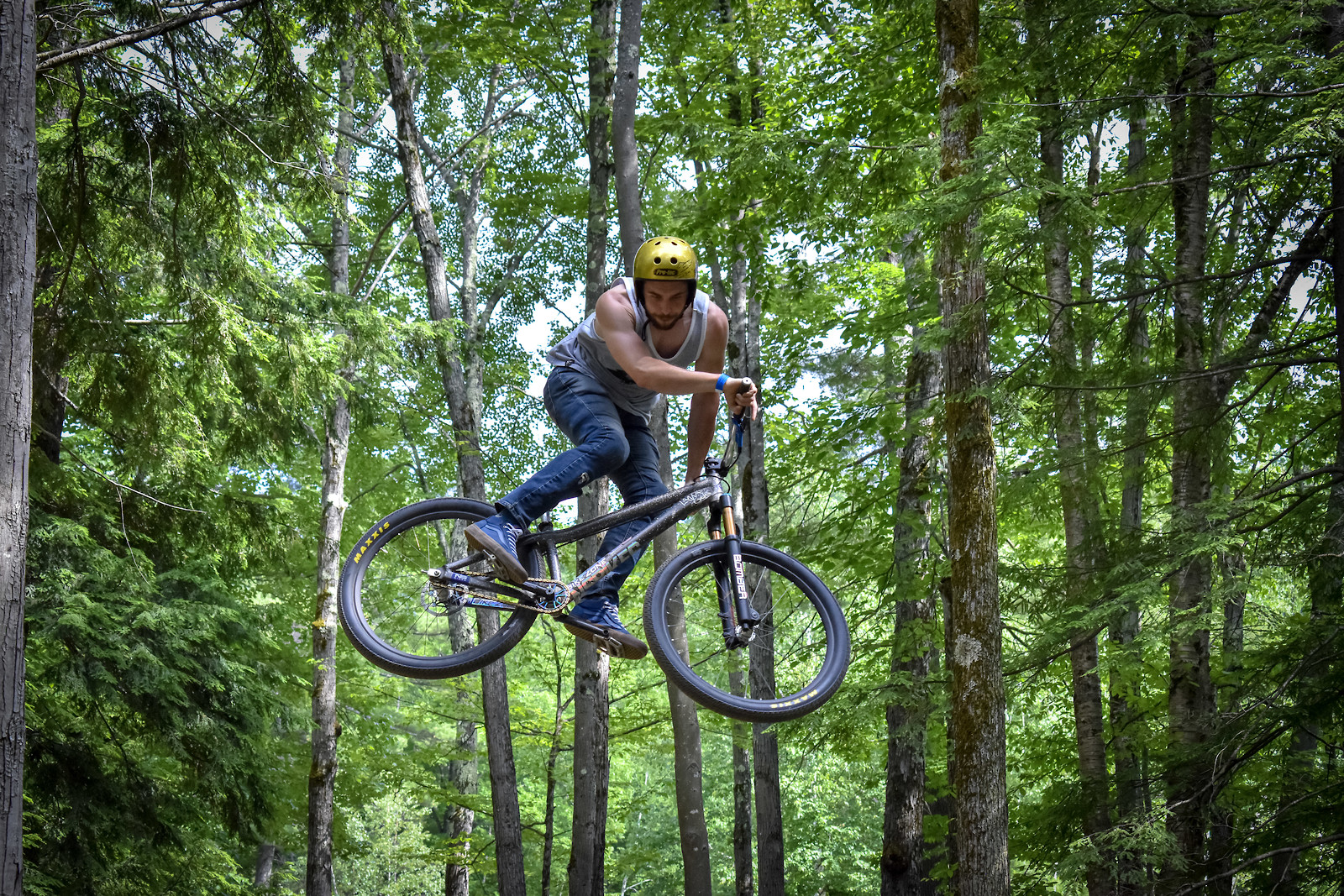 Sherwood Forest - SmashNick - Mountain Biking Pictures - Vital MTB