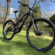 S-Works Enduro Dream Build
