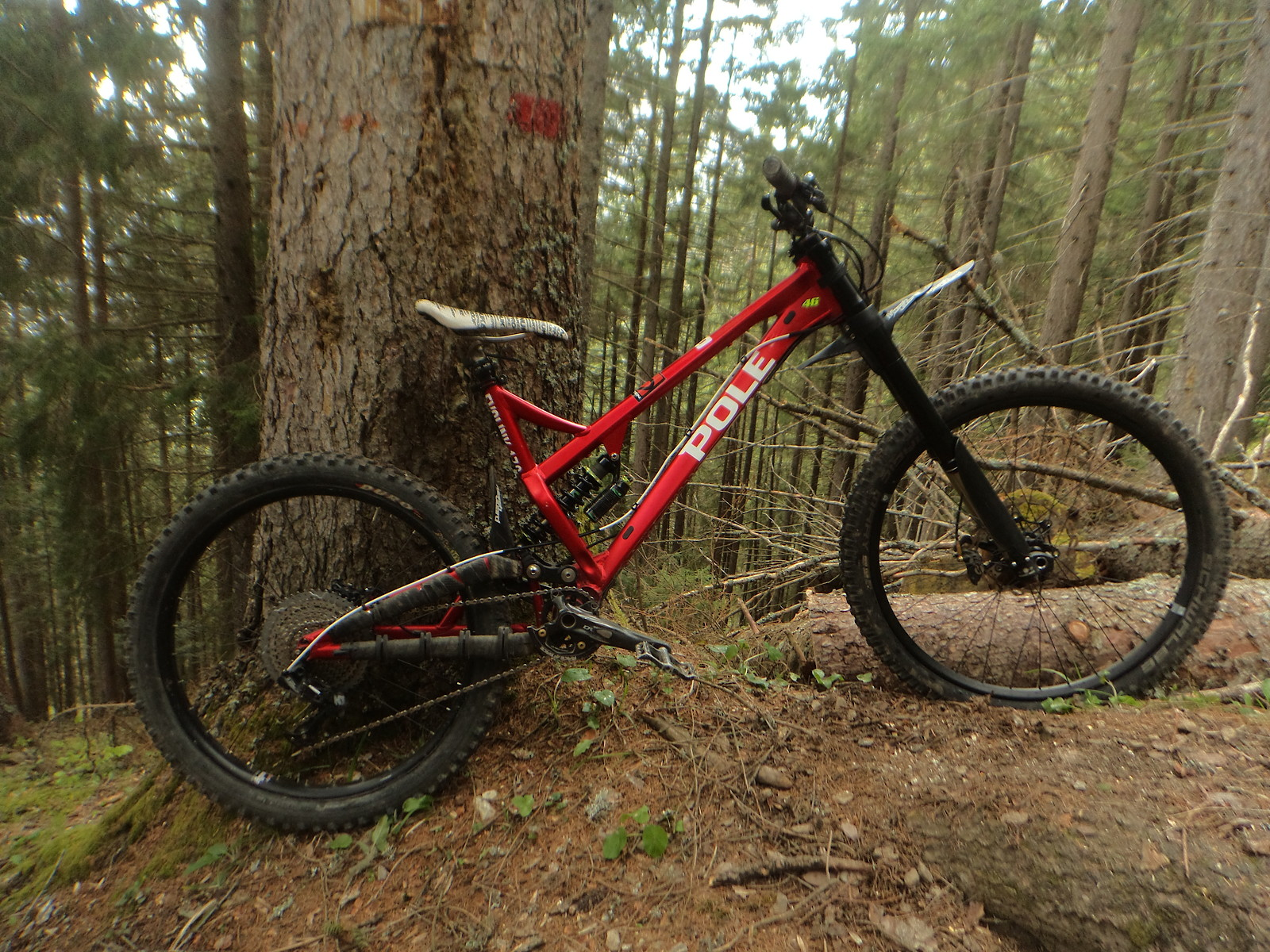 Pole EVOLINK176 - Fred_Pop - Mountain Biking Pictures - Vital MTB
