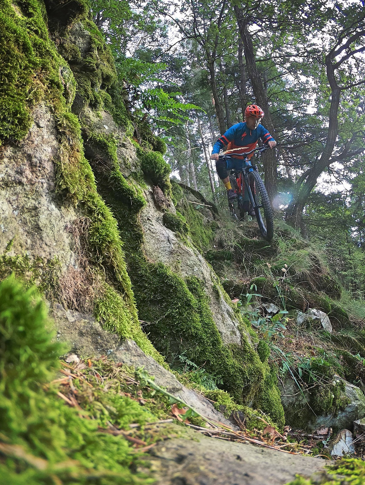 Local Gnar - Piotr_Szwed Szwedowski - Mountain Biking Pictures - Vital MTB