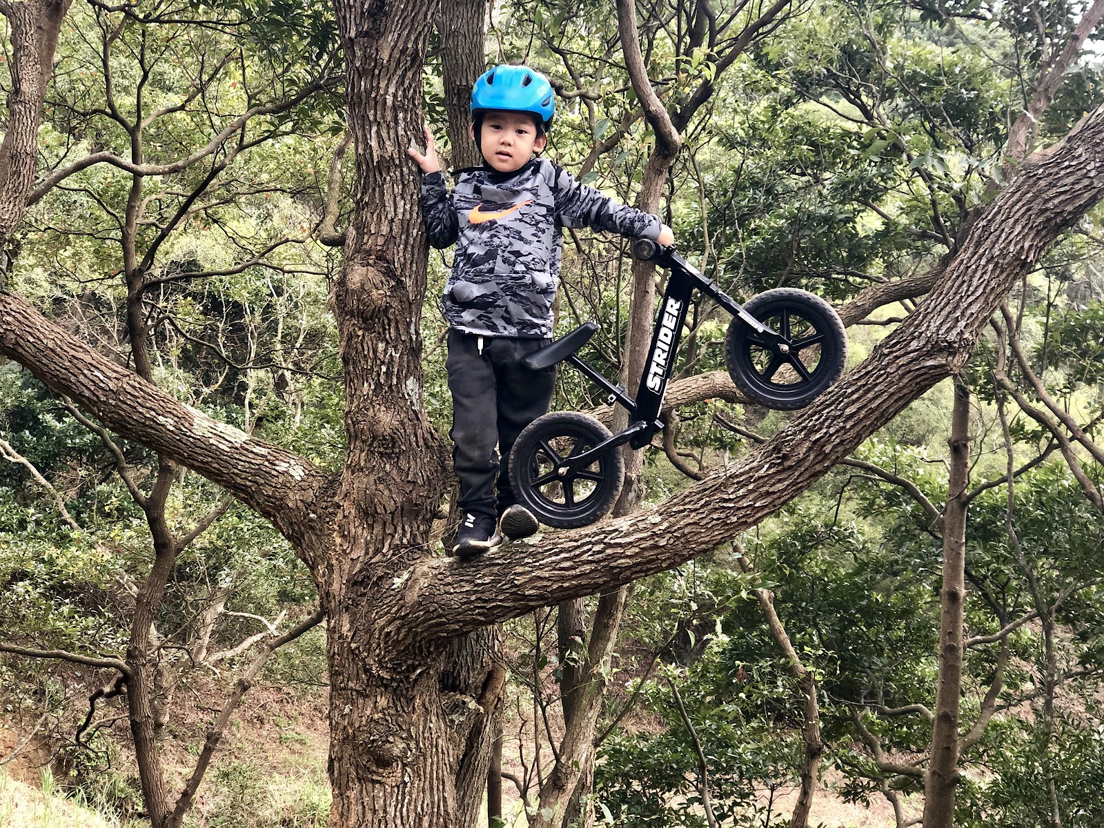 0FFE31D8-AEBC-443F-BC70-D6BF34B24003 - Rickychang - Mountain Biking Pictures - Vital MTB