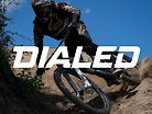 FOX Dialed - This Bike Dimension Can Completely Change How You Ride