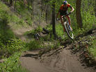 Everesting in Colorado's High Country Singletrack