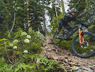 Marco Osborne's Favorite Trails - AKA, Randy's Happy Place