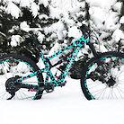 SC HTLT Custom Norwegian Snow Leopard Edition