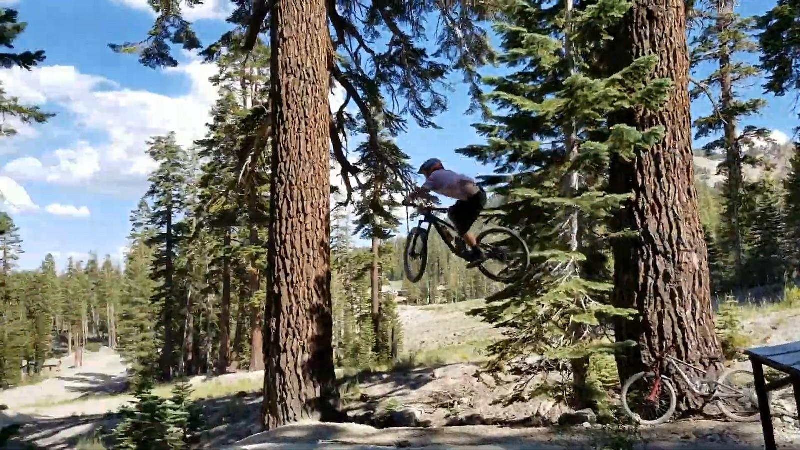 Mammo - switzb15 - Mountain Biking Pictures - Vital MTB