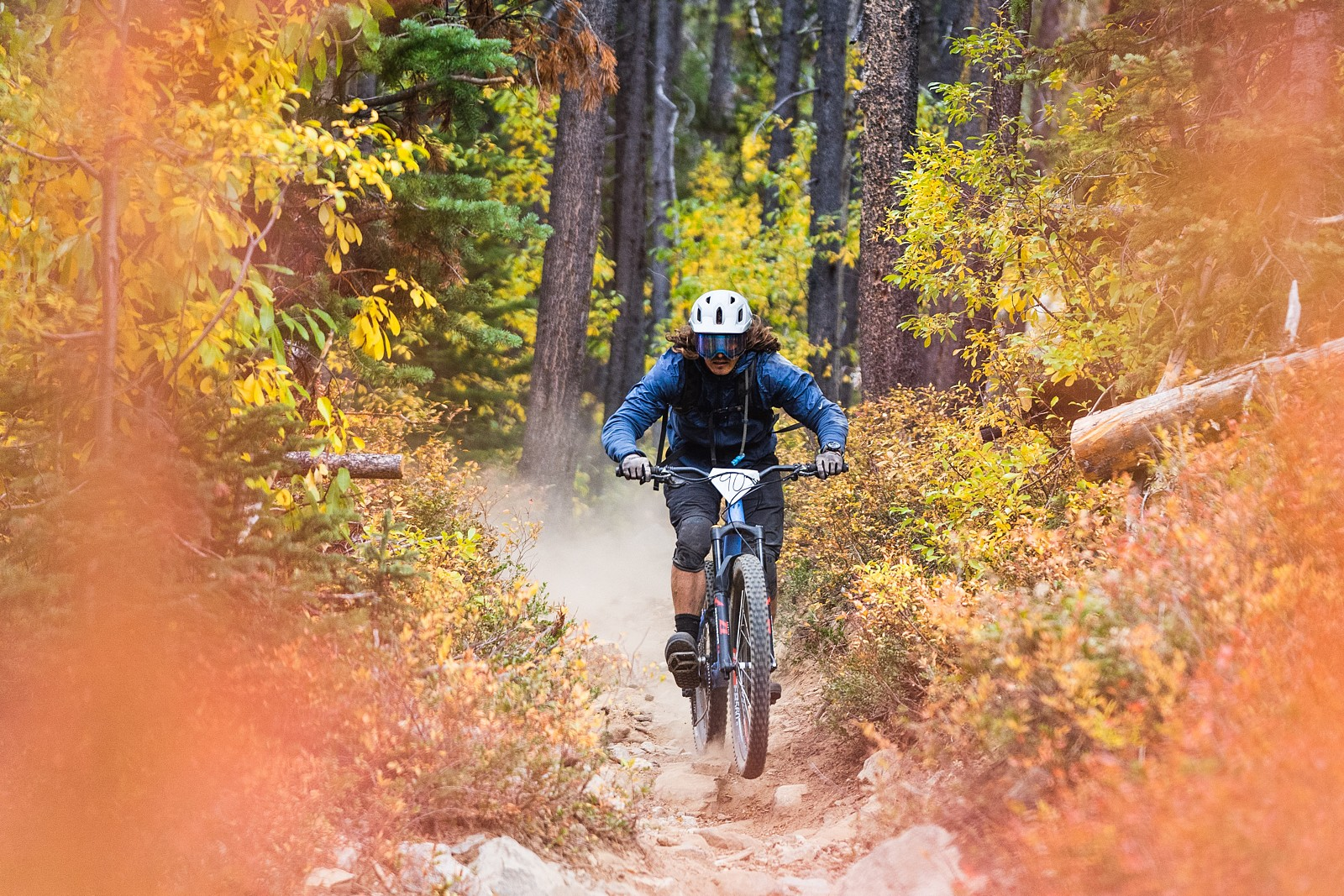 Trans-Cascasdia 2021 Day 4, Stage 12 - switzb15 - Mountain Biking Pictures - Vital MTB