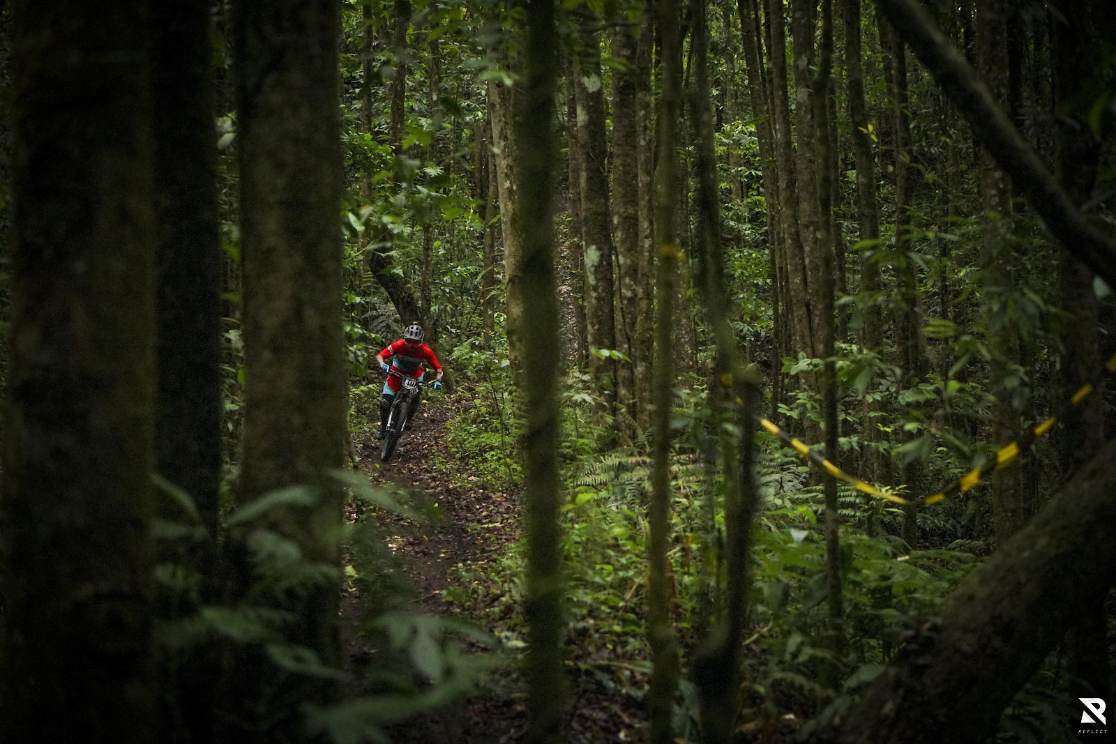Through the Jungle - Ditra Pranata - RezaAkhmad - Mountain Biking Pictures - Vital MTB