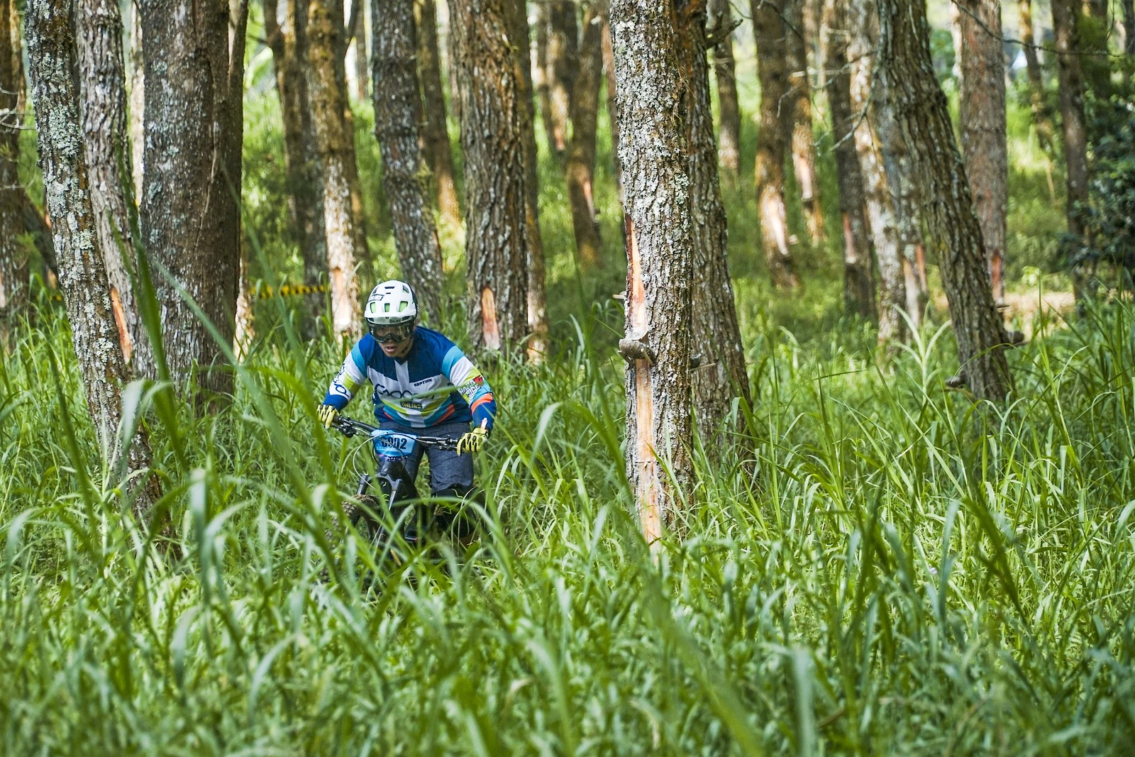 There is no road - RezaAkhmad - Mountain Biking Pictures - Vital MTB