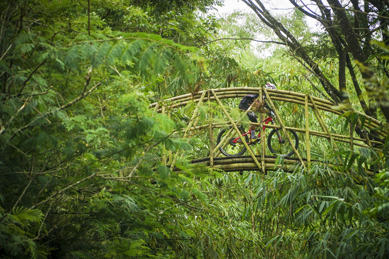 Man made bridge and natural trail - RezaAkhmad - Mountain Biking Pictures - Vital MTB