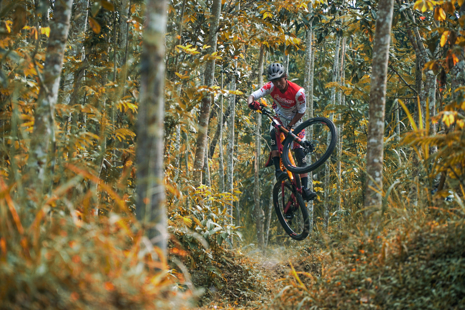 Its autumn already - RezaAkhmad - Mountain Biking Pictures - Vital MTB