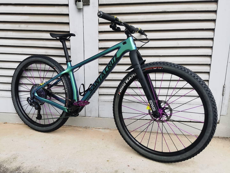 Santa Cruz Chameleon Custom 2021