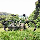 2020 Pivot Switchblade - Treeline Green