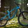 Transition Patrol Carbon Blue/Orange Edition