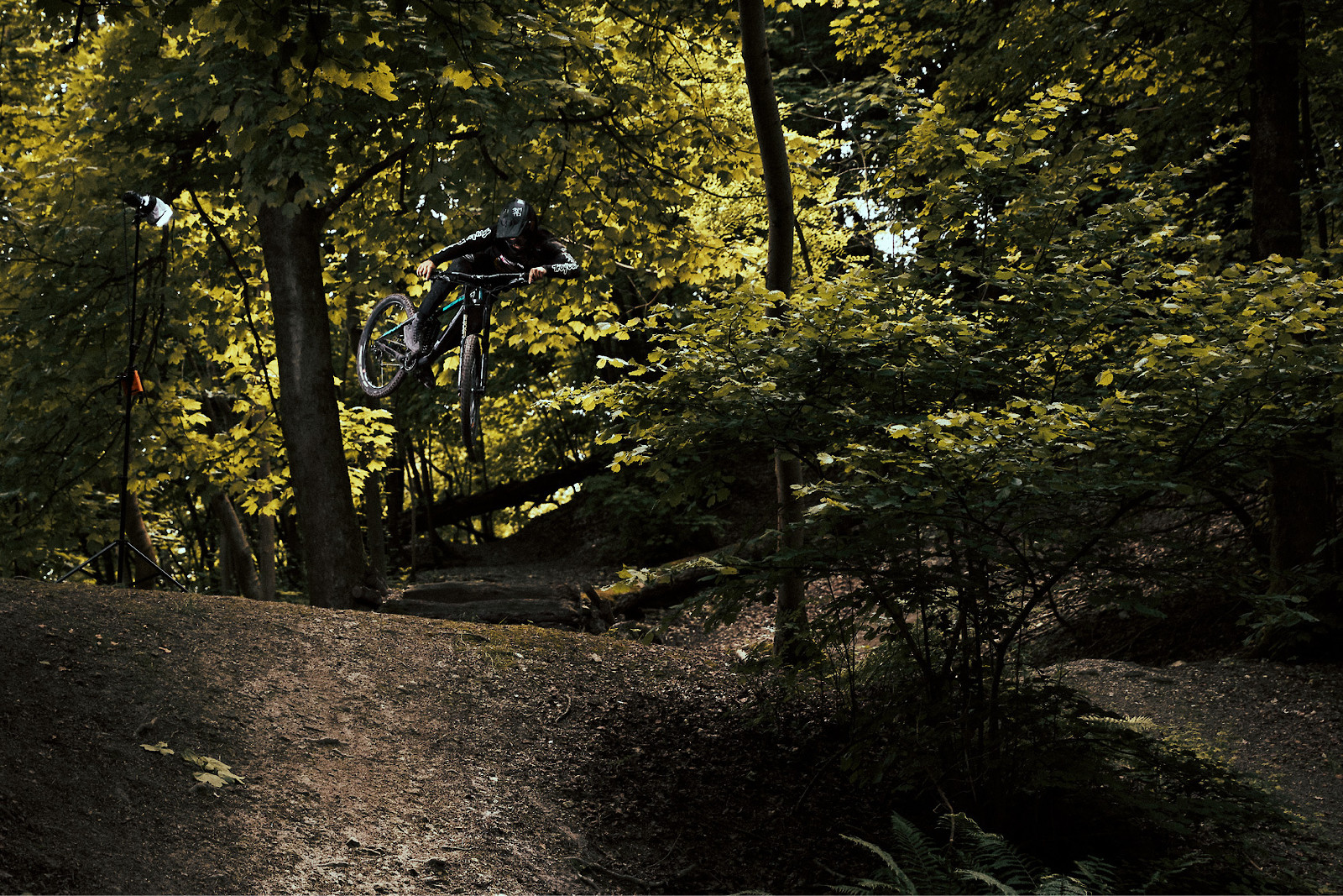 Steyning Trails - DomKniight100 - Mountain Biking Pictures - Vital MTB