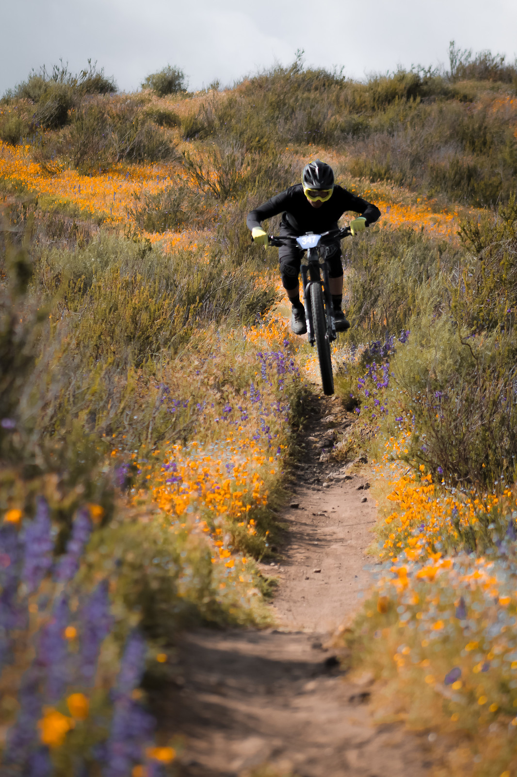 IMG 2058 - Liam Donohue - Mountain Biking Pictures - Vital MTB