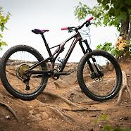 The Purple People Eater: S-Works Stumpy