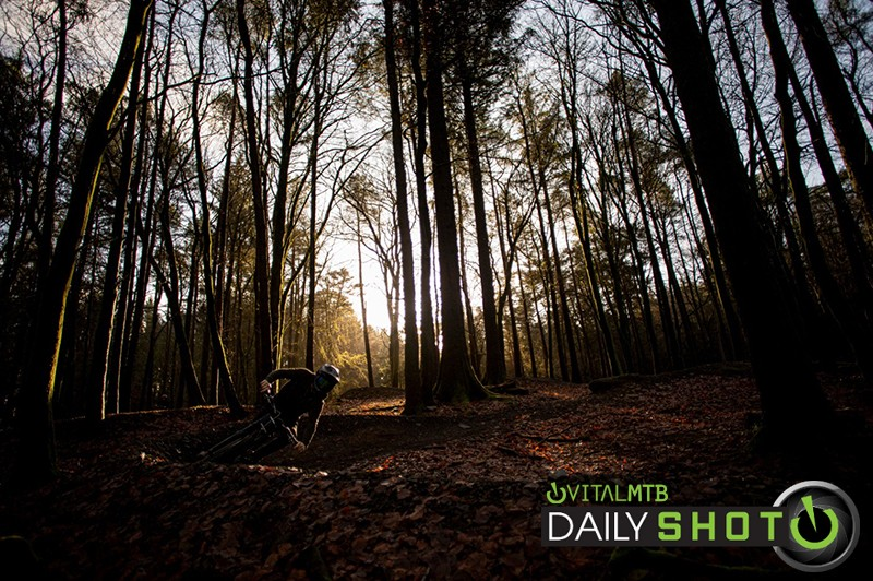 in the woods - martin dunn - Mountain Biking Pictures - Vital MTB