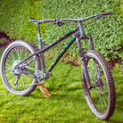 Custom Dartmoor Primal 2020