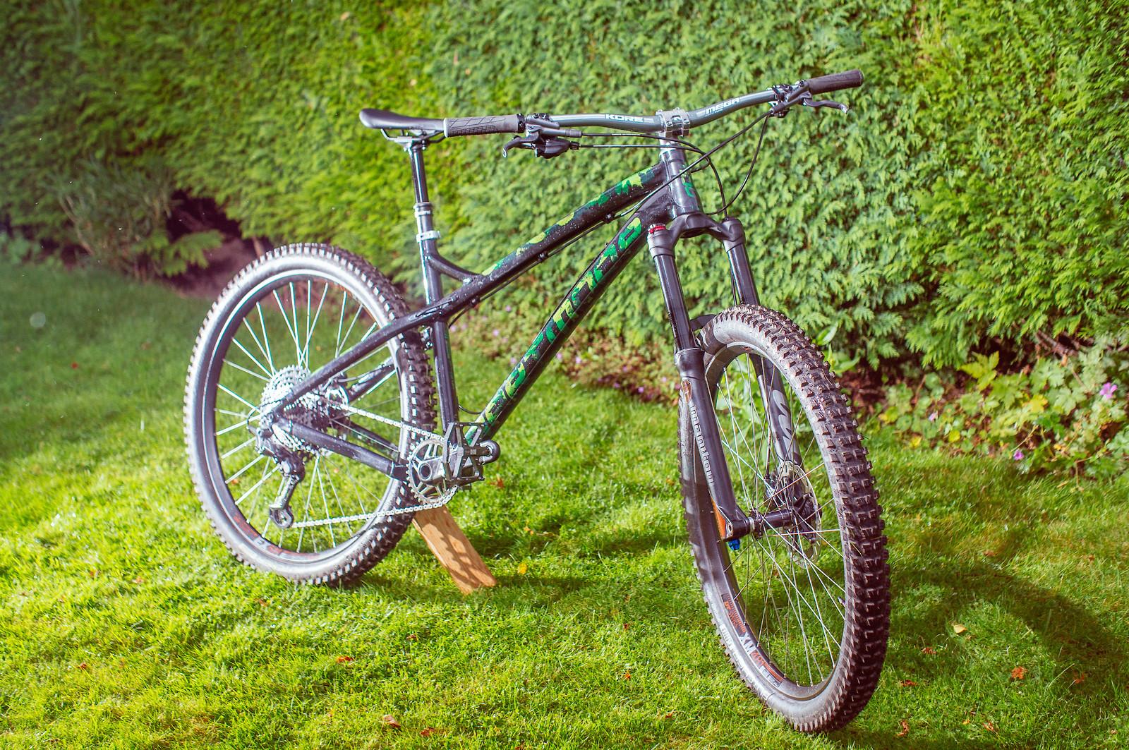 Custom Dartmoor Primal 2020