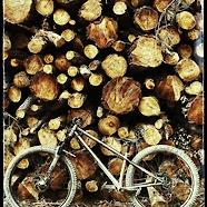 Bike Bob's special Vendetta