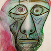 Vital MTB member Picasso