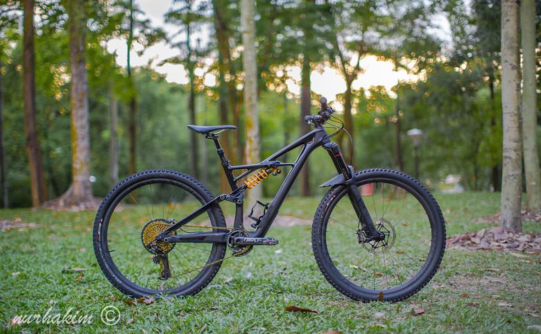 049cdb83f47 Custom SWORKS Enduro 29er 2018 - Kooliner7's Bike Check - Vital MTB