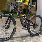Custom Stumpjumper SWORKS 29er 2019