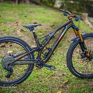 Custom Troy Lee Designs EVO Stumpjumper Carbon 29er