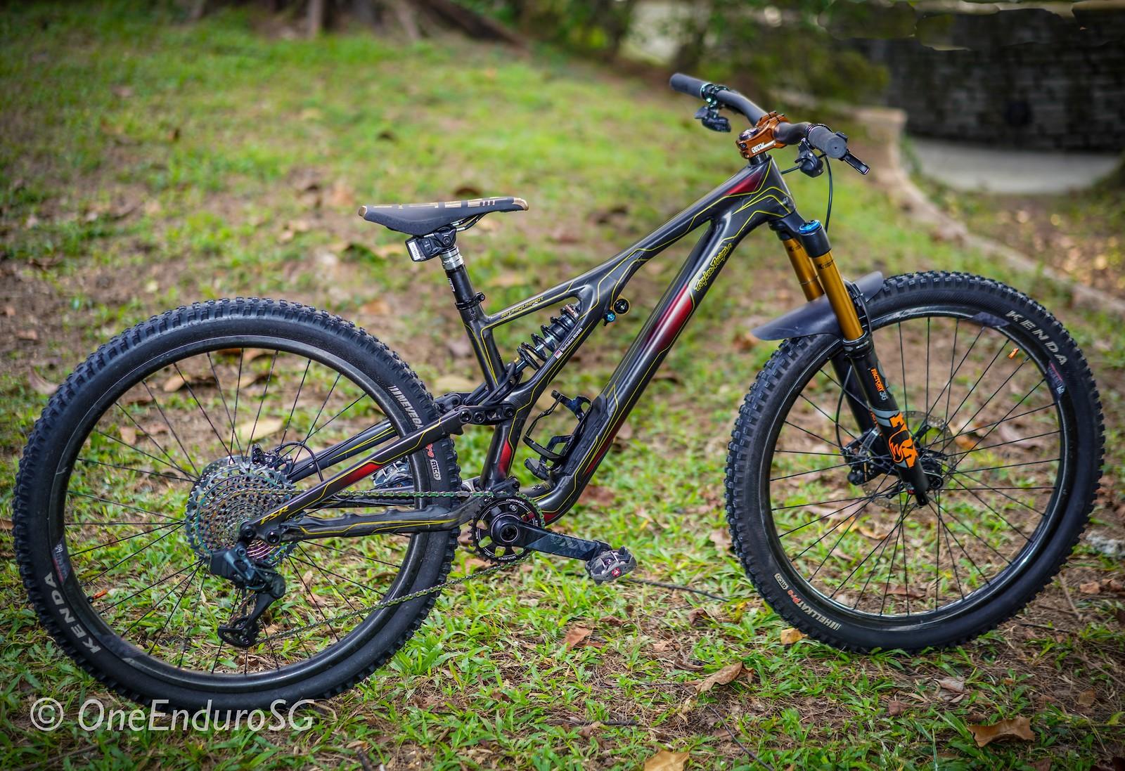 Custom Troy Lee Designs EVO Stumpjumper Carbon 29er