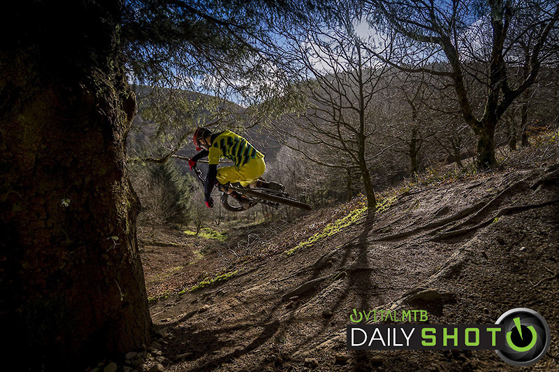 Trees and Tucks - robbarkerimages2017 - Mountain Biking Pictures - Vital MTB