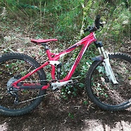 Specialized XC expert