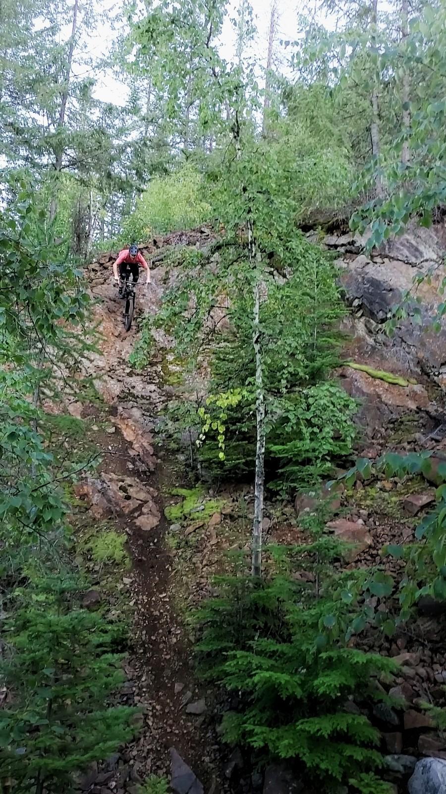 Eat My Brain! - Rossland, BC - O1D4 - Mountain Biking Pictures - Vital MTB