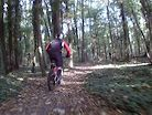 Ride in the wood 2