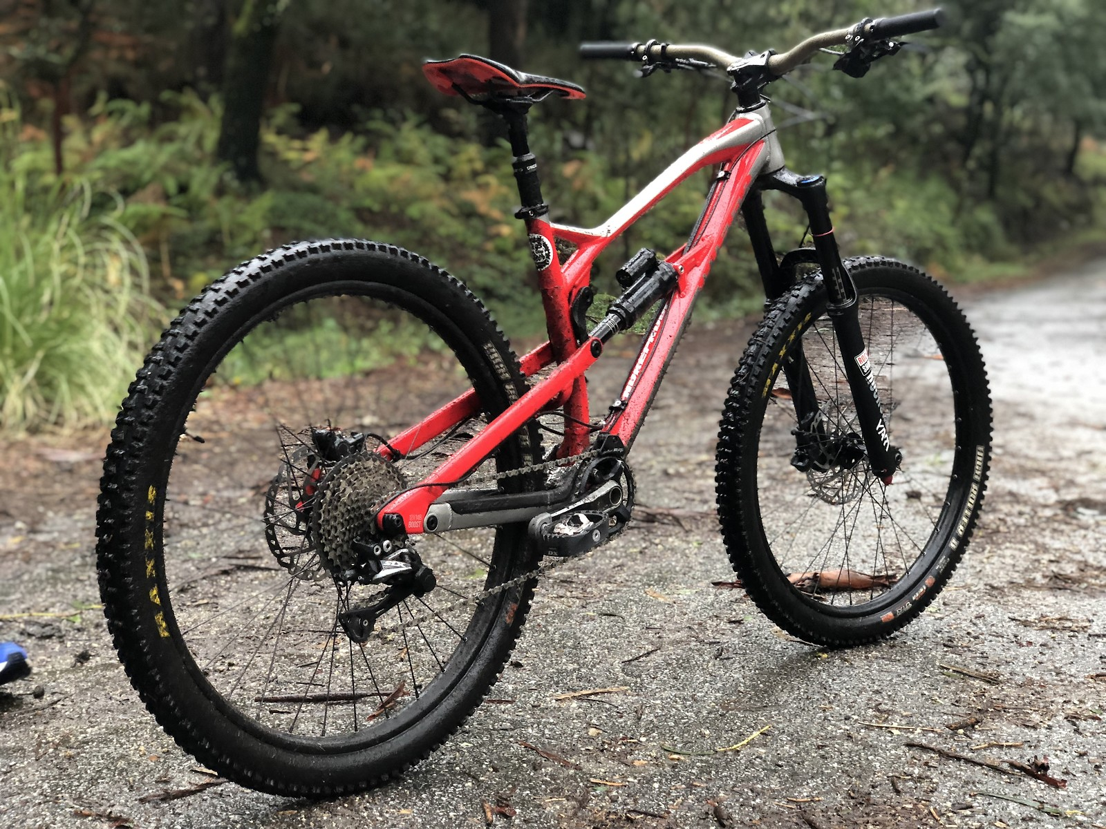 E21981D0-933B-4119-ADCB-D06792680E36 - Ricardo_Azevedo - Mountain Biking Pictures - Vital MTB